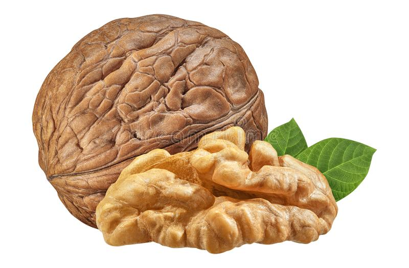 Walnut isolated closeup on white background with clipping path. Nut macro. Walnuts with leaf as package design element collection stock photos