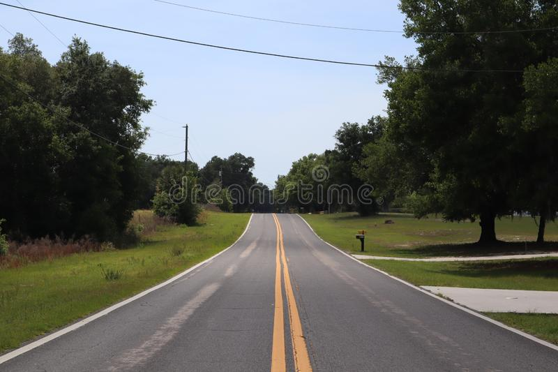 Two-way road divided by two yellow solid lines. two lane road. road with trees on both sides, through the Florida forest stock photo