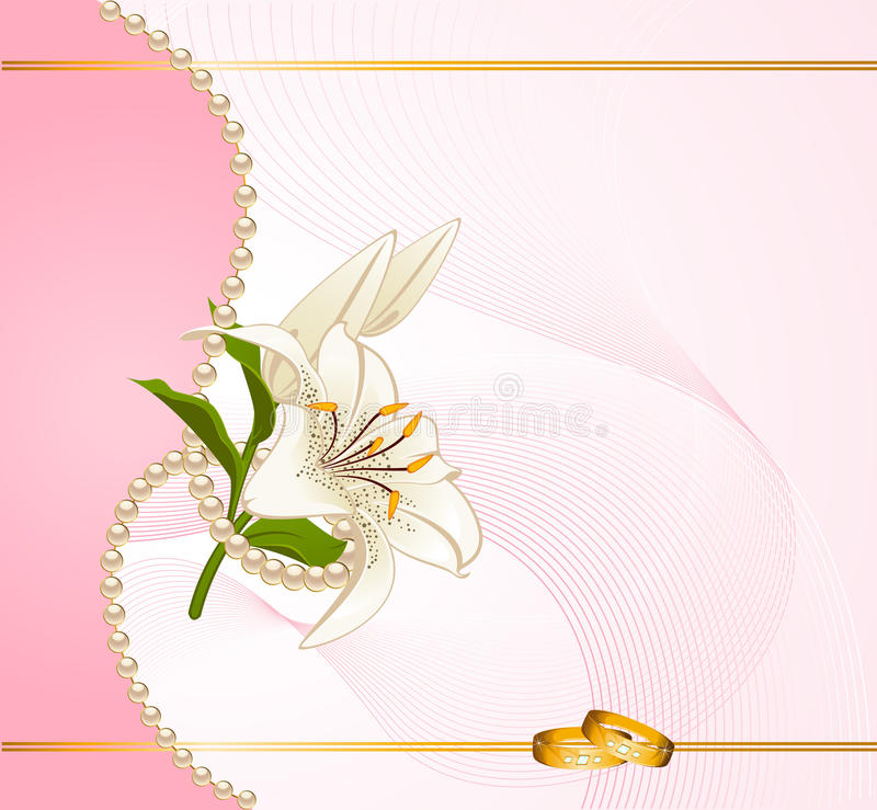 Download Two wedding rings stock vector. Image of metal, blossom - 18719138