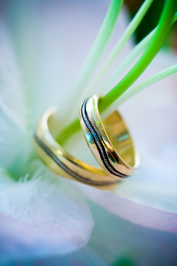 Two Wedding Rings On A Flower Royalty Free Stock Images