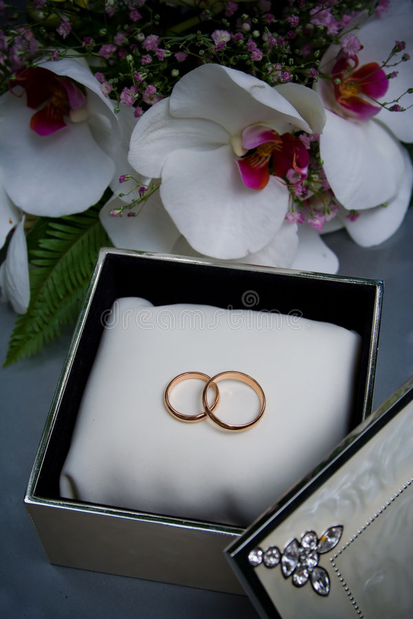 Free Two Wedding Rings In A Box Royalty Free Stock Images - 4590679