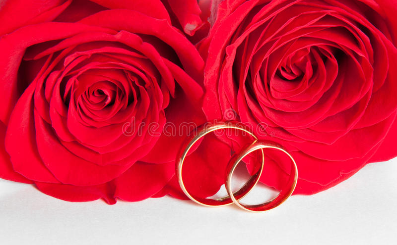 Two Wedding Rings And Red Rose Royalty Free Stock Photography