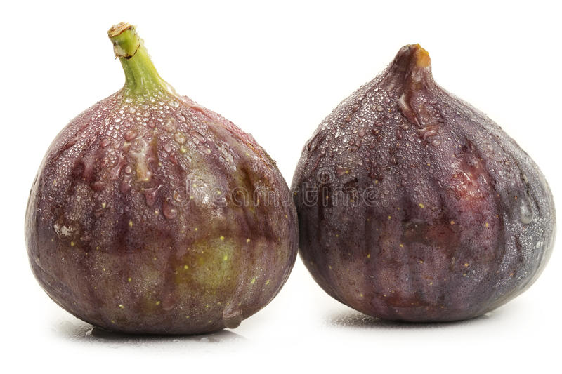 Two wet fresh oriental figs stock images
