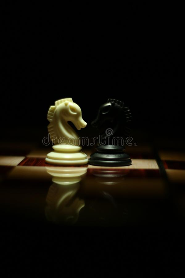 Two White and Black Chess Knights Facing Each Other on Chess Board stock photo