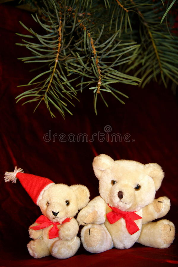 Free Two White Christmas Teddy Royalty Free Stock Images - 17113039