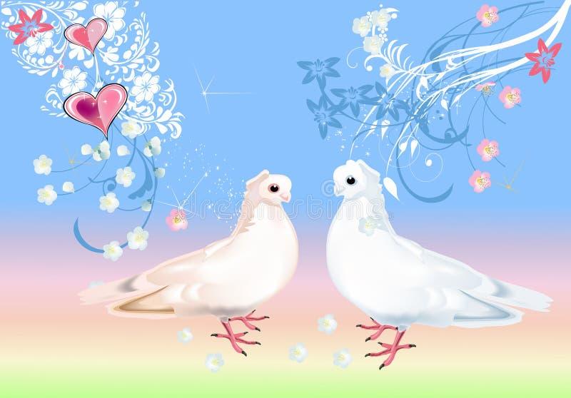 Two White Doves On Light Background Stock Vector Illustration Of