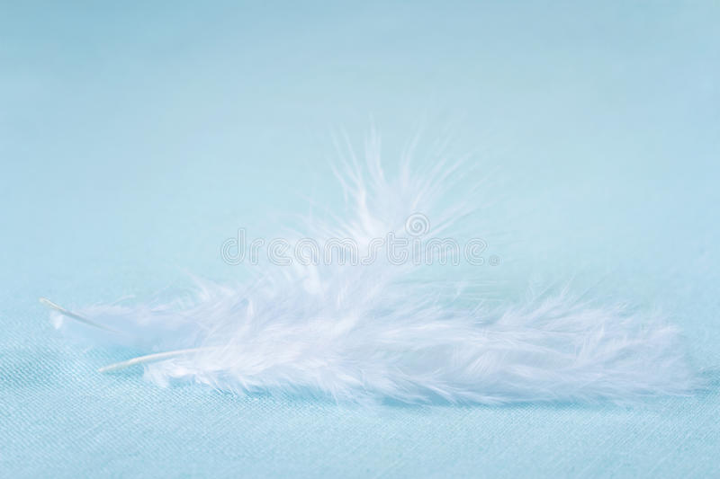 Download Two White Feathers On Light Blue Linen Background Stock Image - Image: 28355307