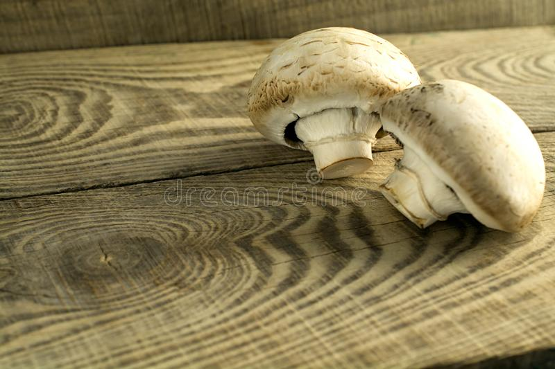 White mushrooms champignons on a wooden table. Two white mushrooms of champignon on a rough textured wooden table. Country style stock photography