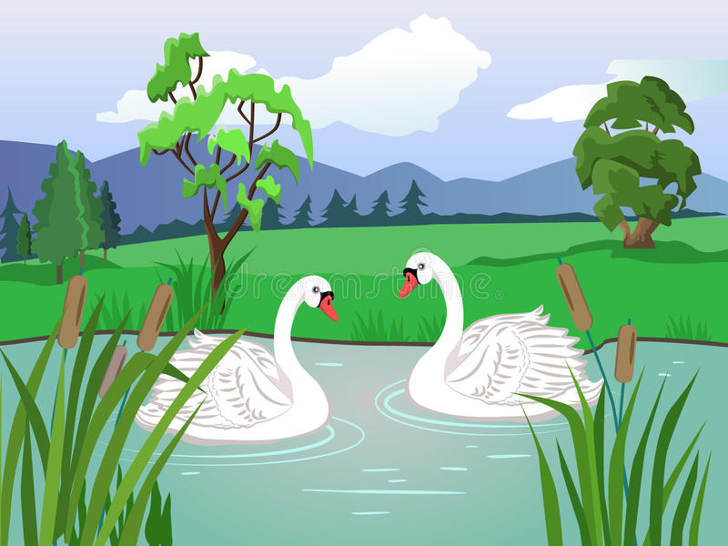 Two white swans. Couple in love. Lake with beautiful water lilies. stock illustration