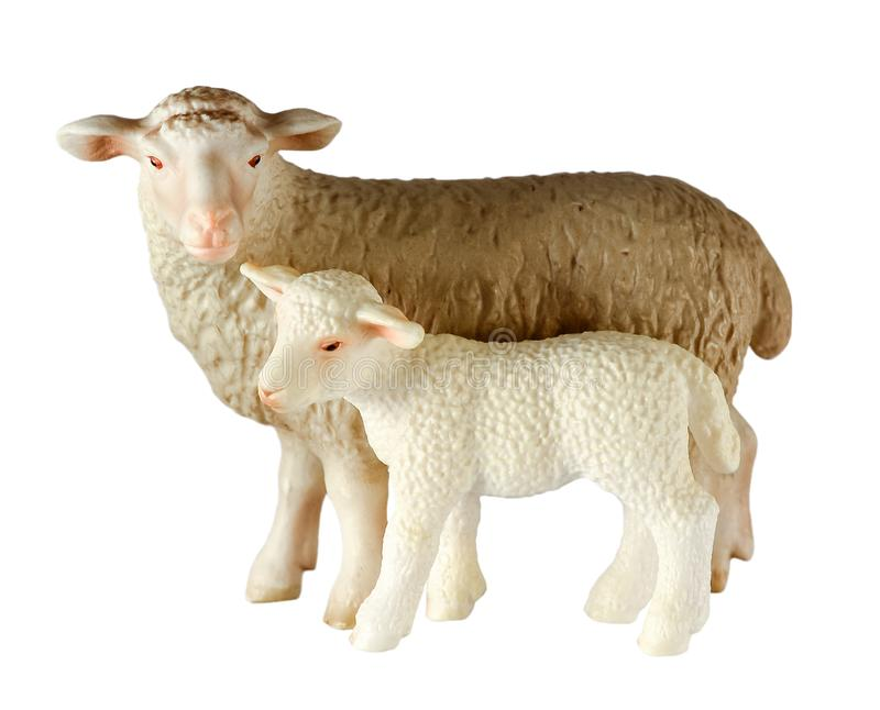 Two white toy lambs standing full-length isolated on white background. The sheep and the lamb. Close up royalty free stock photos