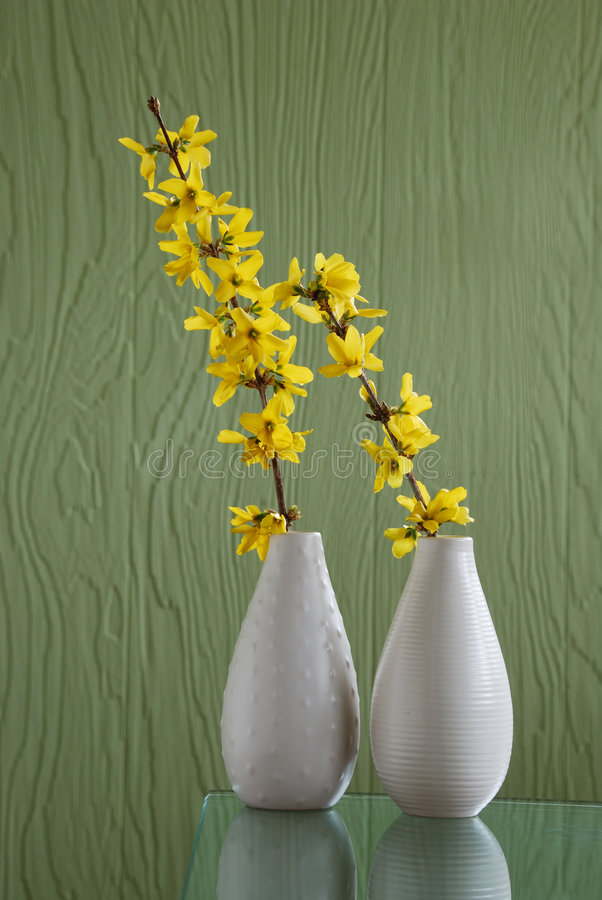 Free Two White Vases Over Green Background Stock Images - 8553174