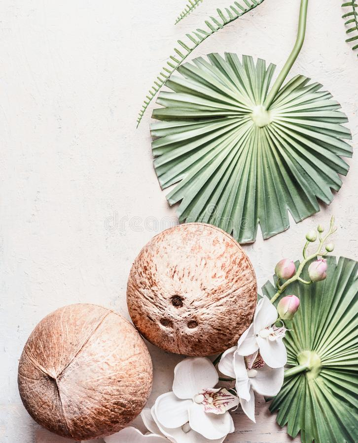 Two whole coconuts on light background with tropical leaves and flowers, top view, frame. Copy space for your design: product or royalty free stock image