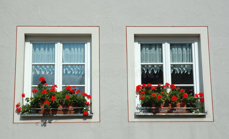 Download Two Windows With Red Flowers Stock Photo - Image: 6521960