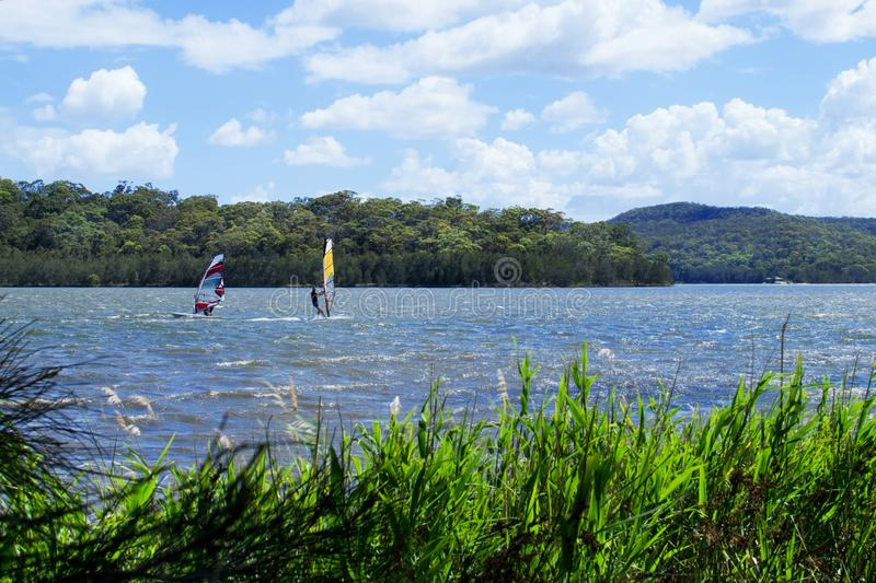 Two windsurfers struggling with a strong wind. On Narrabeen Lagoon in Sydney royalty free stock photography