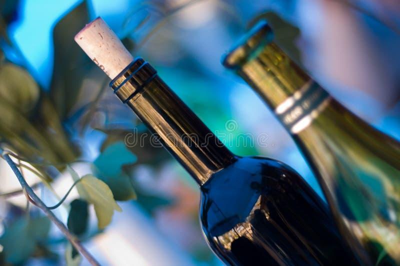 Two wine bottles stock photo
