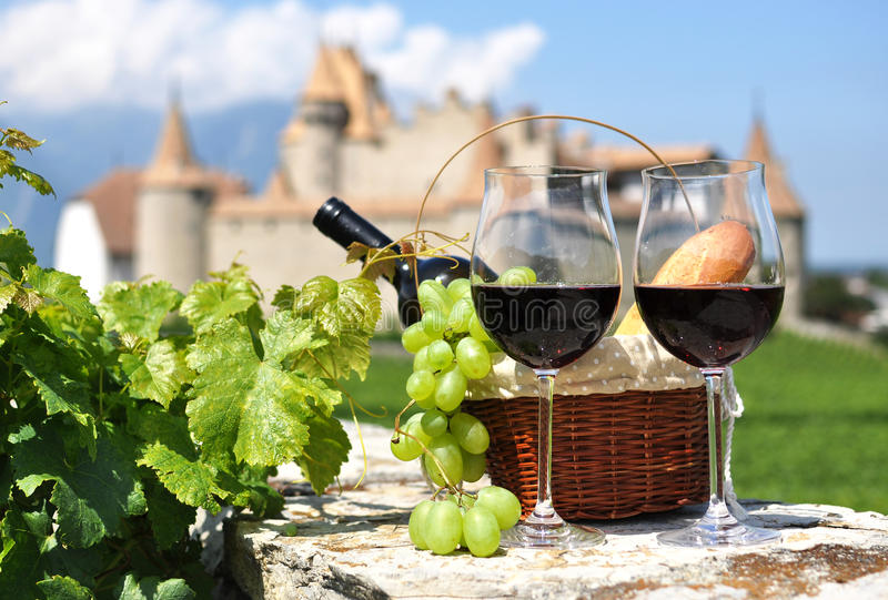 Download Wine and grapes stock image. Image of agriculture, fort - 29881567