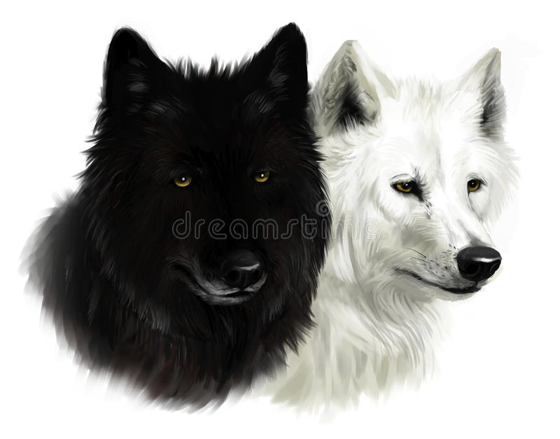 Two wolves stock illustration