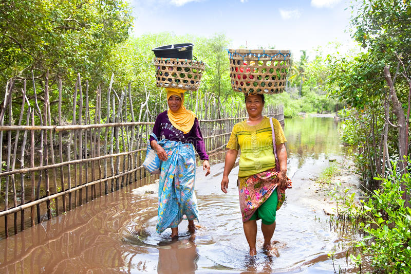 Download Two Woman Balancing Food Basket On The Head Editorial Stock Image - Image of pray, classical: 26848429