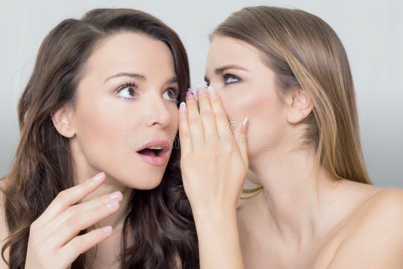 Two woman gossip stock image