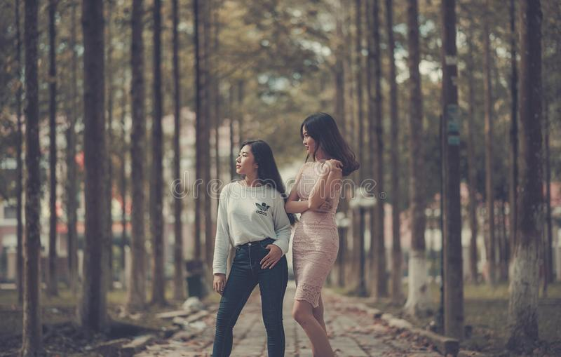 Two Woman Standing on Sidewalk Near Trees royalty free stock image