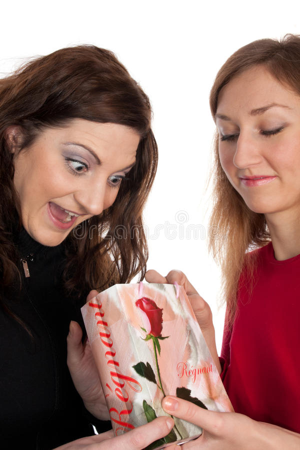 Two women stock image