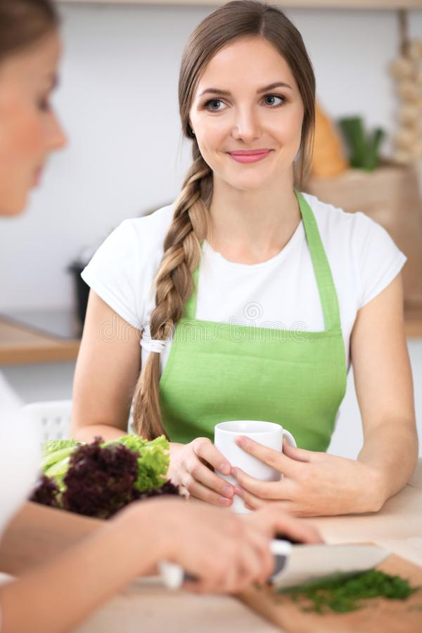 Two women are cooking fresh salad in a kitchen and having a pleasure talk. Friends and Chef Cook concept royalty free stock image