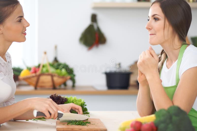 Two women friends cooking in kitchen while having a pleasure talk. Friendship and Chef Cook concept stock photo