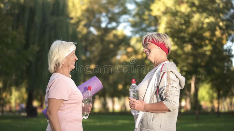 Two women friends meeting before workout in park and giving advices each other stock images