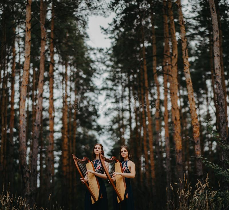 Two women harpists stand at forest and play harps against a background of pines. Two women harpists stand at forest and play harps in beautiful dresses against a stock photography