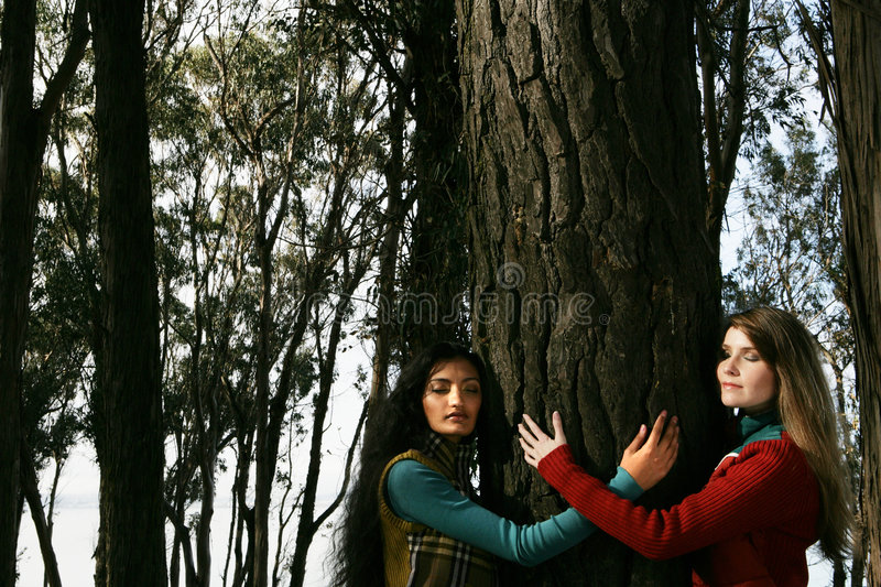 Download Two women hugging a tree stock photo. Image of sunny, girl - 5234766