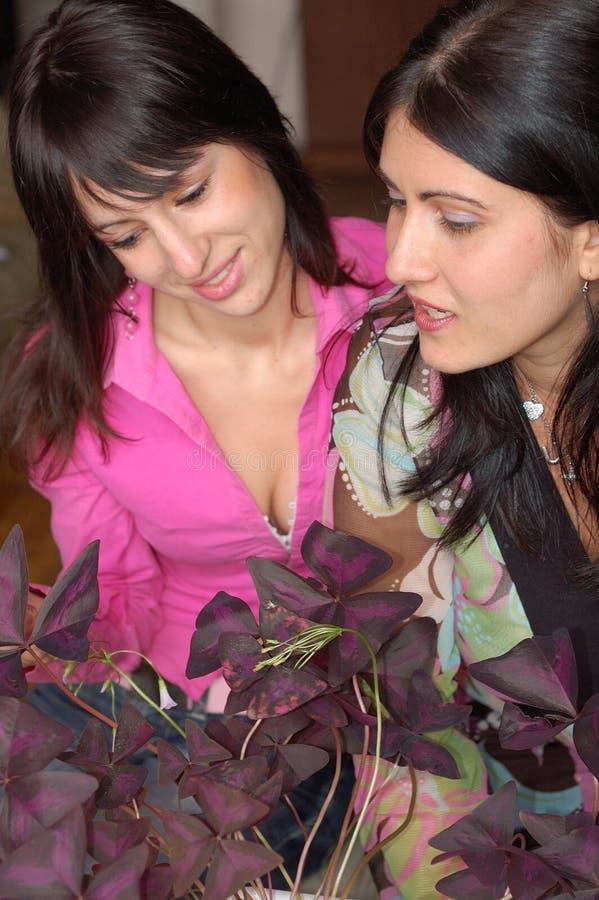 Two women talking stock photo