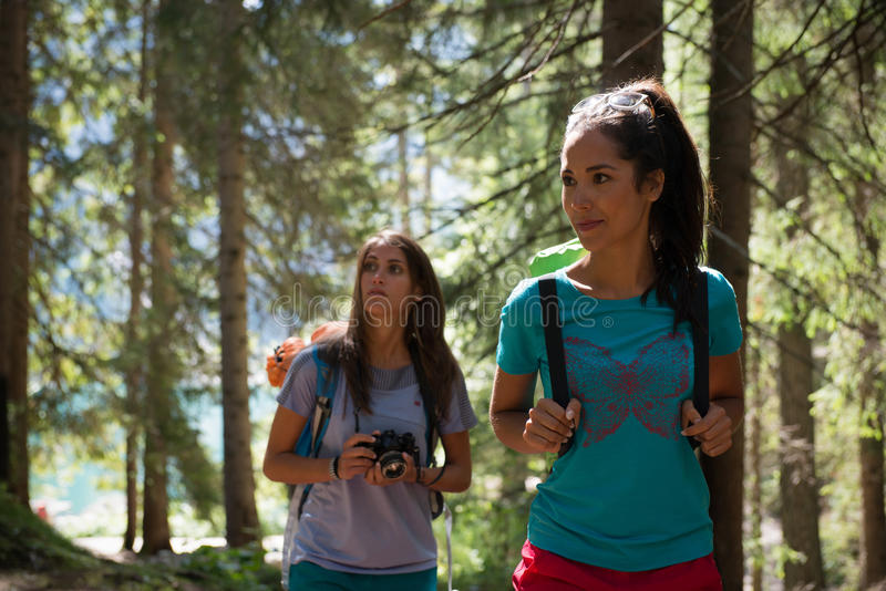 Two women walking along hiking trail path in forest woods during sunny day. Group of friends people summer adventure royalty free stock photo