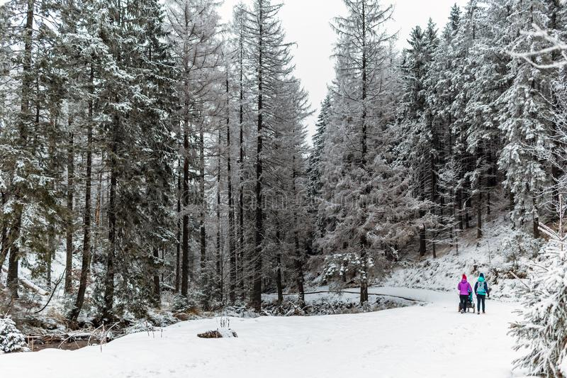 Two women winter hiking with baby stroller, mother and baby stock photos