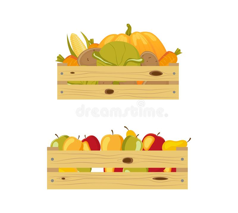 Two wooden boxes packed with apples and vegetables. Two wooden storage boxes - one packed with apples, another containing autumn vegetables, cartoon vector royalty free illustration