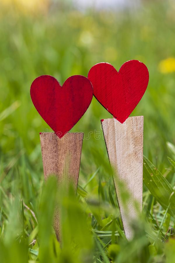 Two wooden heart shapes in the grass. Close-up stock images