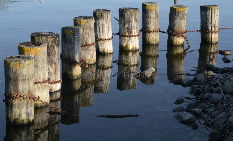 Two wooden poles for anchoring use in Trasimeno lake, Italy. Wooden poles for anchoring tied joined with a chain in Trasimeno lake in the central Italy, on royalty free stock images