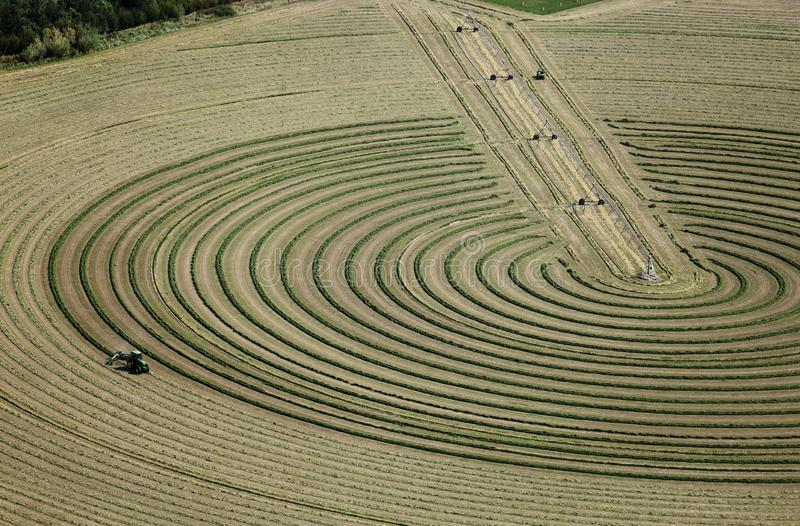 An aerial image of an alfalfa field being harvested. royalty free stock photos