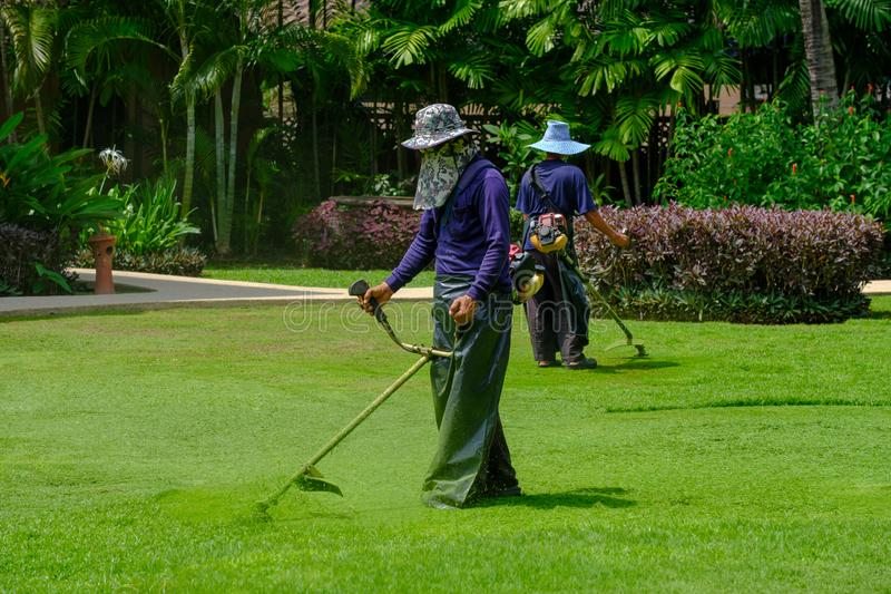 Two workers gardener`s cut the green grass with mower trimmer on the field royalty free stock photography