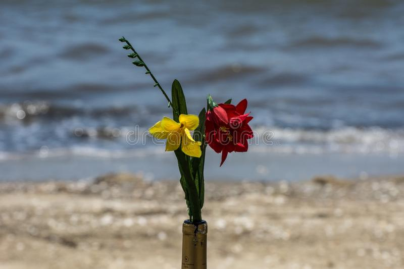 Two yellow and red flowers in a bottle near the sea royalty free stock photo