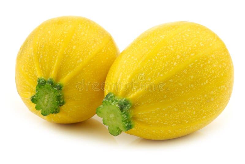 Two yellow round zucchini's ( Cucurbita pepo) royalty free stock photos