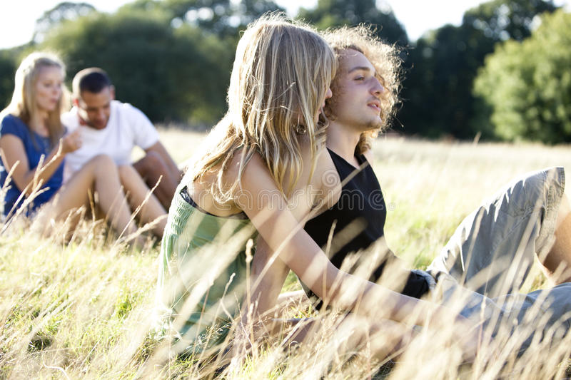 Two young couples sitting on the grass in summertime royalty free stock photo