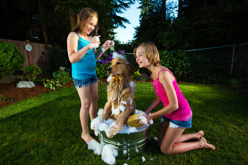 Two young girls giving their dog a bath royalty free stock photography
