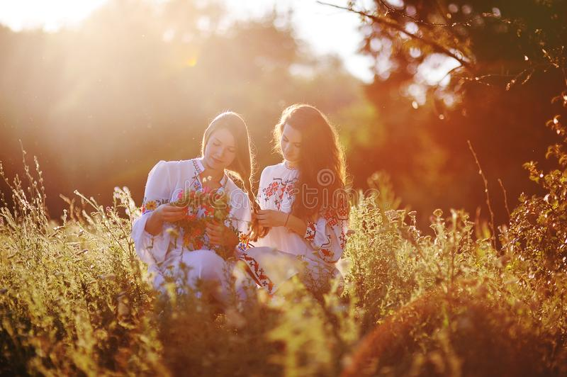 Two young pretty girls in white shirts braid each other and weave wreaths of flowers against the background of grass and. Nature at sunset. Celebrating royalty free stock photography