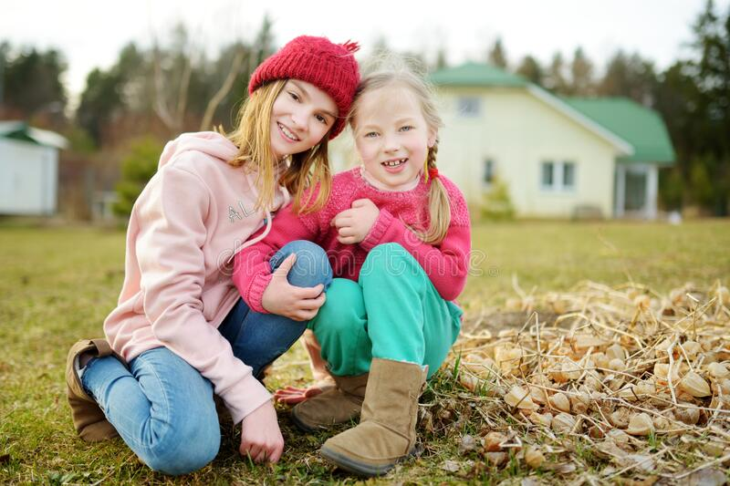 Two young sisters having fun together on beautiful spring day. Active family leisure with kids. Family fun outdoors stock images