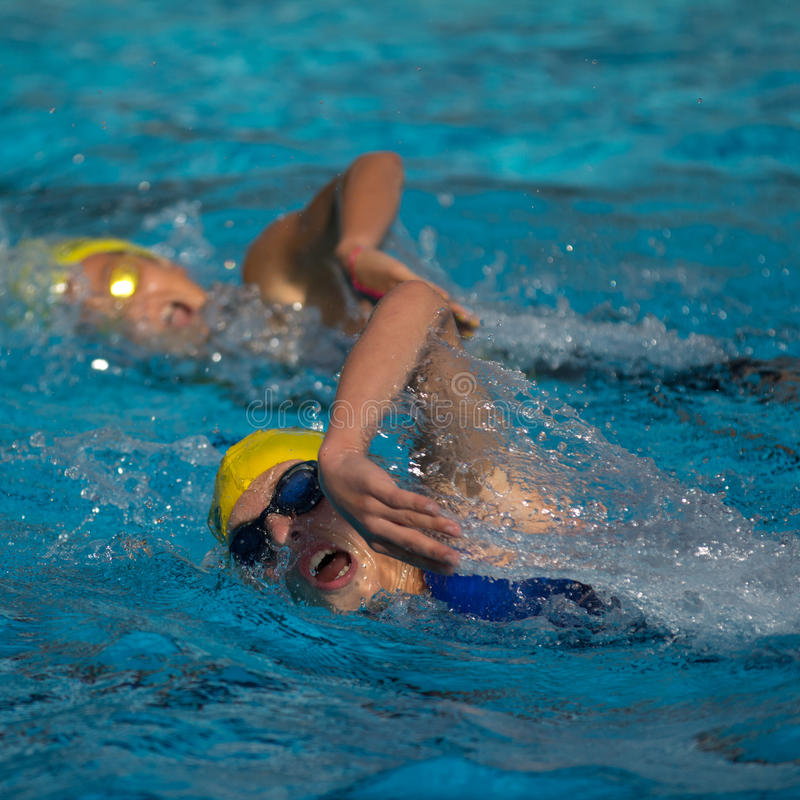 Two young swimmers royalty free stock image
