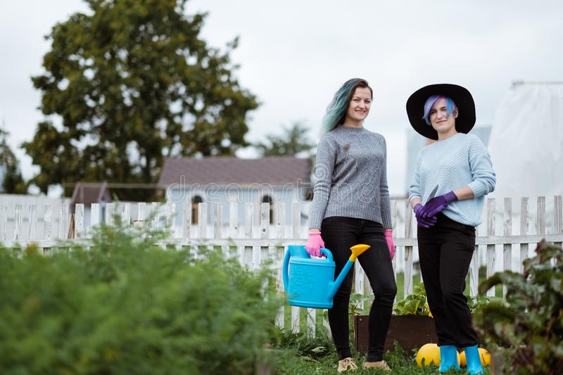 Two young women in the background of a garden with gloves and tools with a field of beds stock photo
