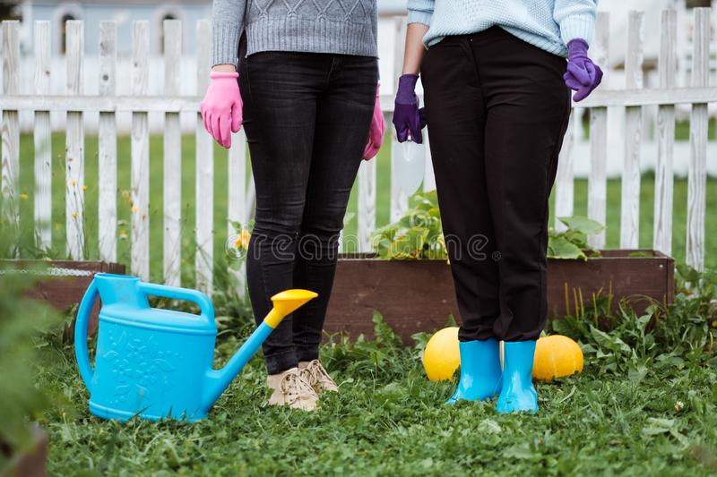 Two young women in the background of a garden with gloves and tools with a field of beds royalty free stock photos