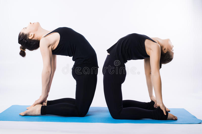 Two young women doing yoga asana tree pose Vrikshasana isolated on white background royalty free stock images