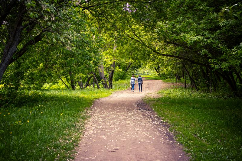 Two young women walking outdoor in scenic park at spring time. royalty free stock images