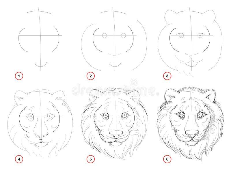 Tworzenie krok po kroku ołówkowy rysunek Strona pokazuje dlaczego uczyć się remisu nakreślenie imaginacyjna śliczna tygrys głowa royalty ilustracja